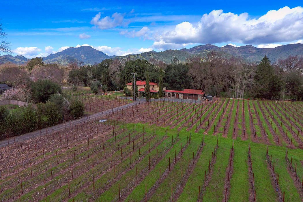 Homage Vineyards