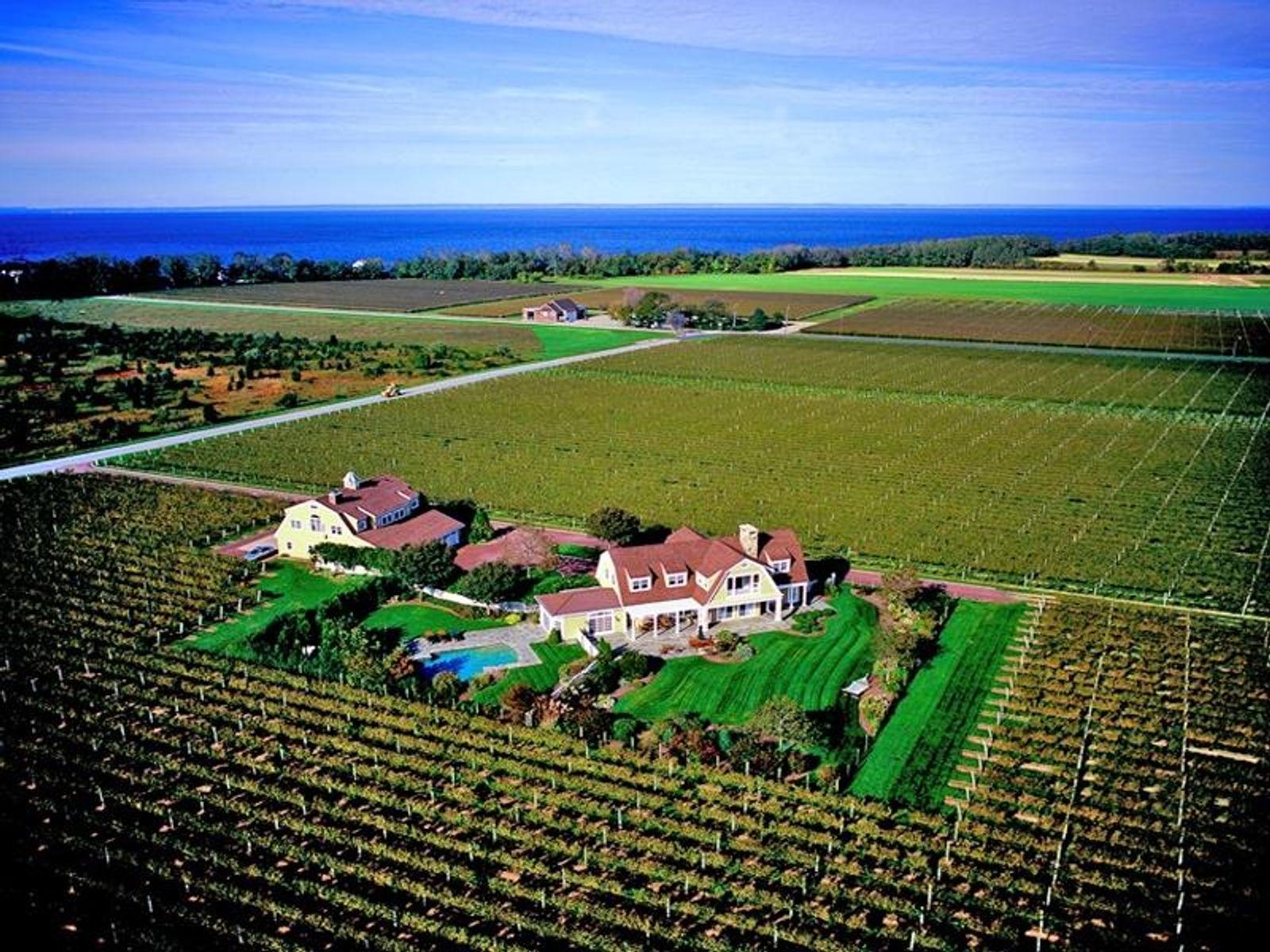 Country Vineyard Estate