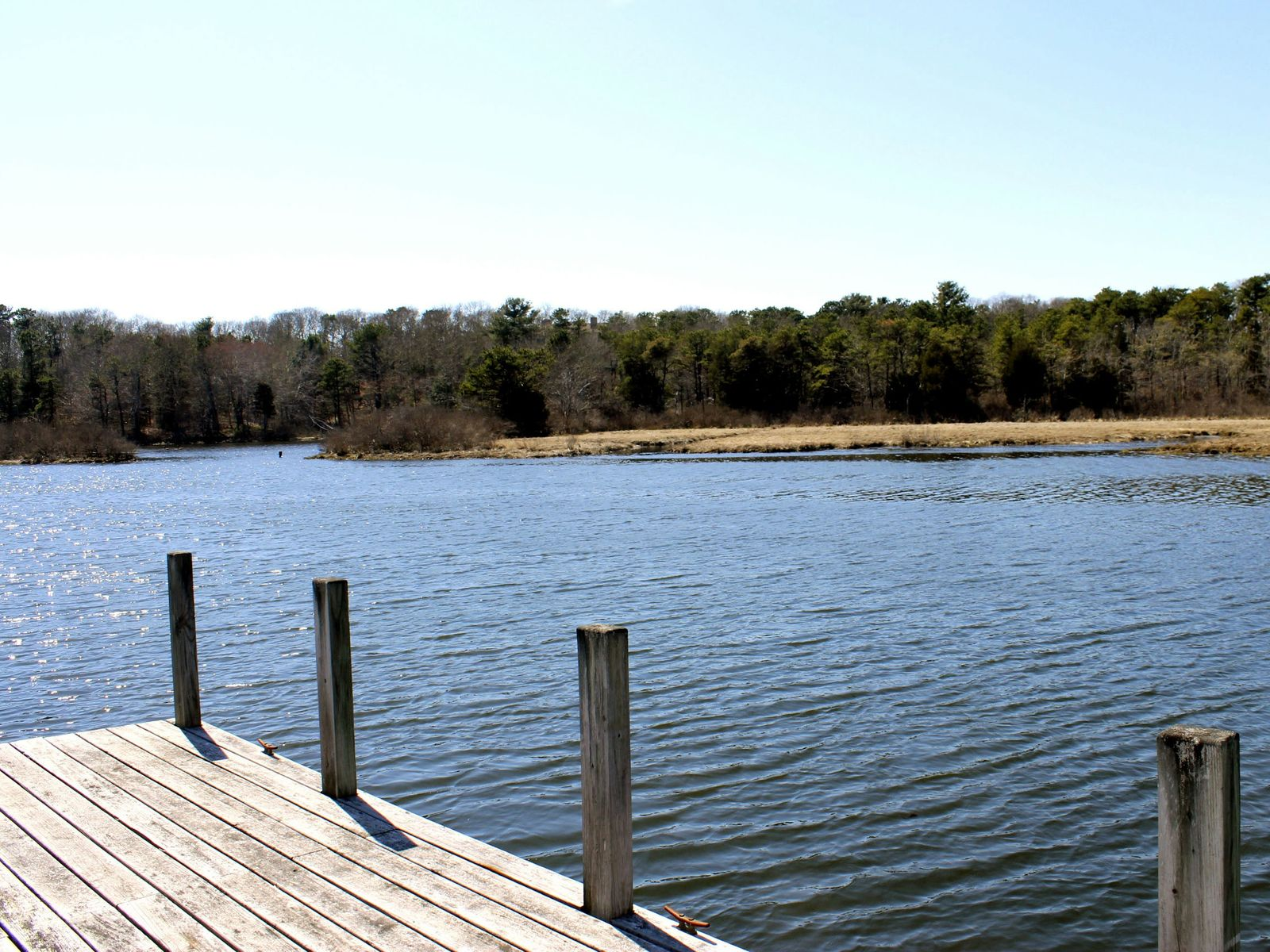 Green Pond Salt Waterfront with Dock