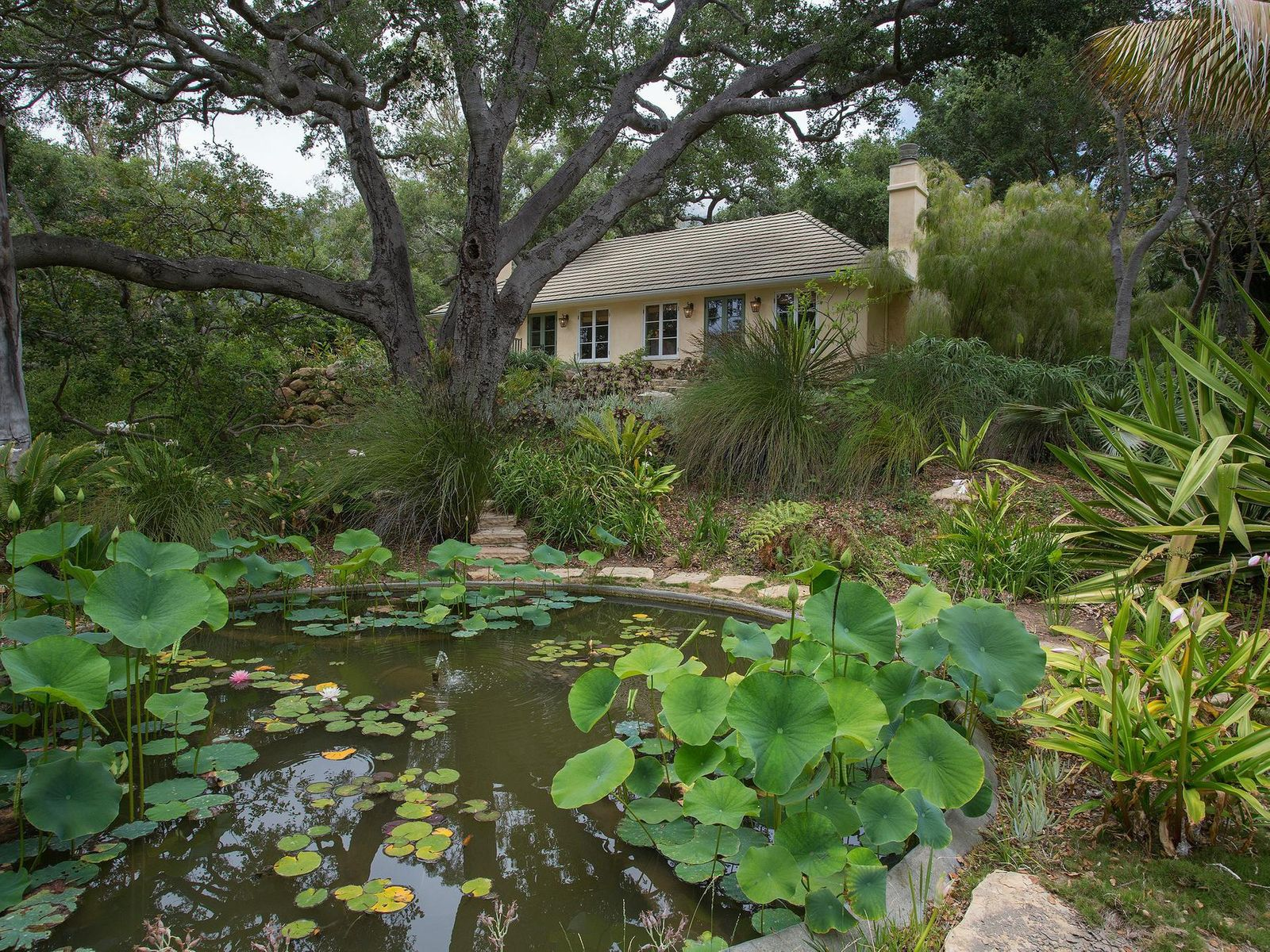 Lotus/Lily Pond and Two Guest Suites