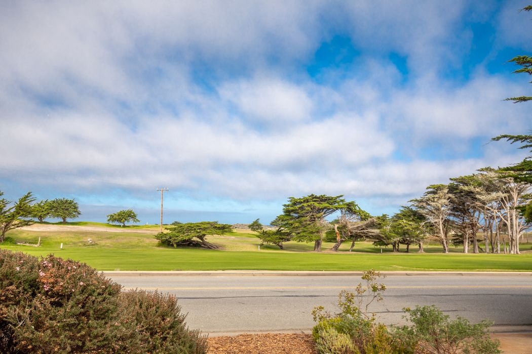 59 Asilomar Avenue Pacific Grove, CA 93950