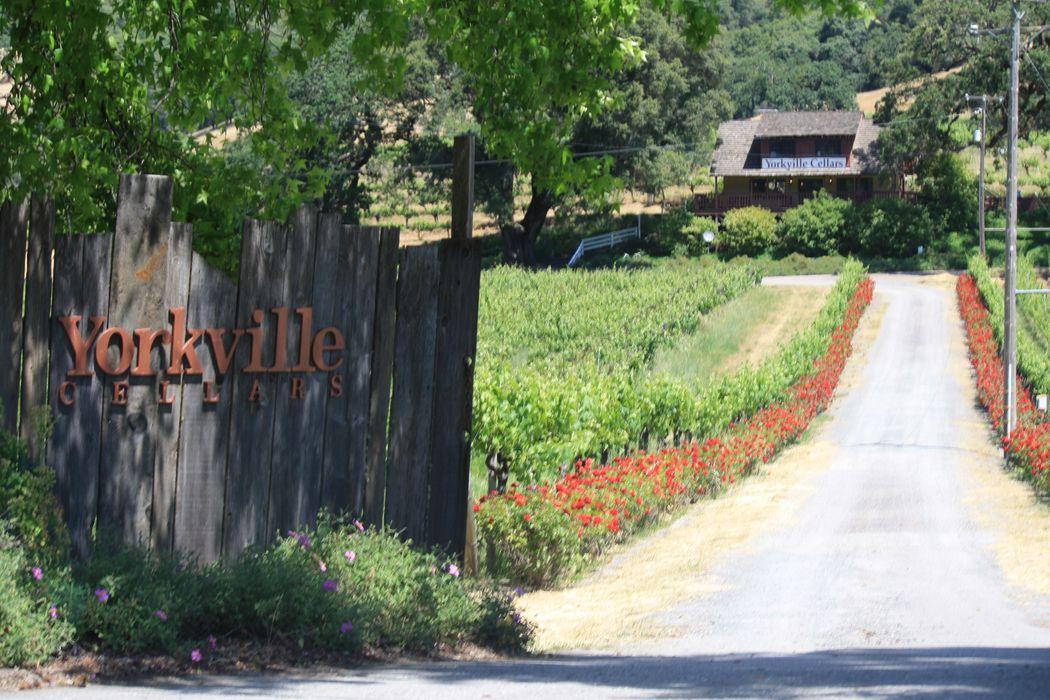 25701 Highway 128 Yorkville, CA 95494