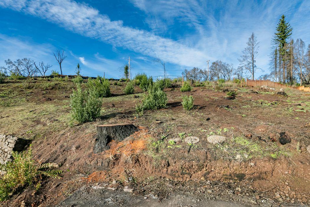 1417 Michele Way Santa Rosa, CA 95404