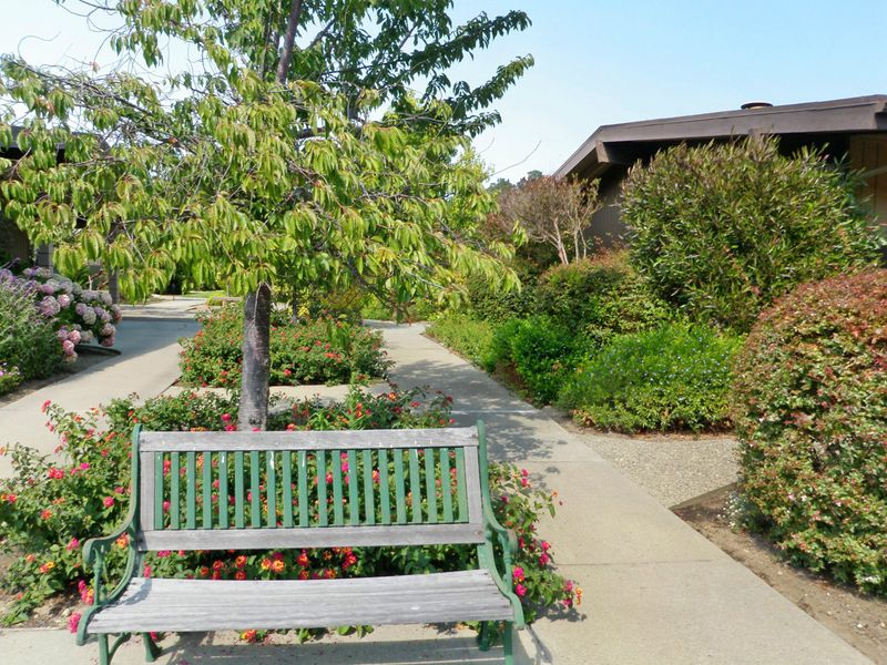 Retirement Living in Carmel