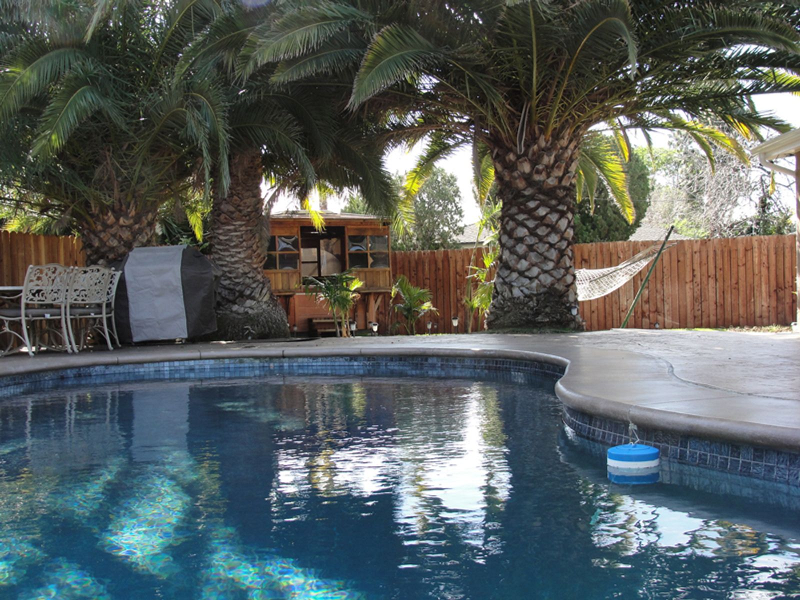 Expert Remodel with Pool & Spa