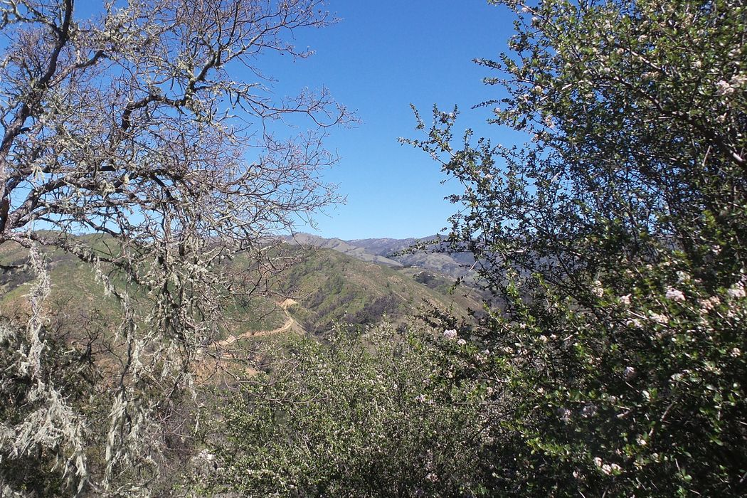21435 Peroy Ranch Road Carmel Valley, CA 93924