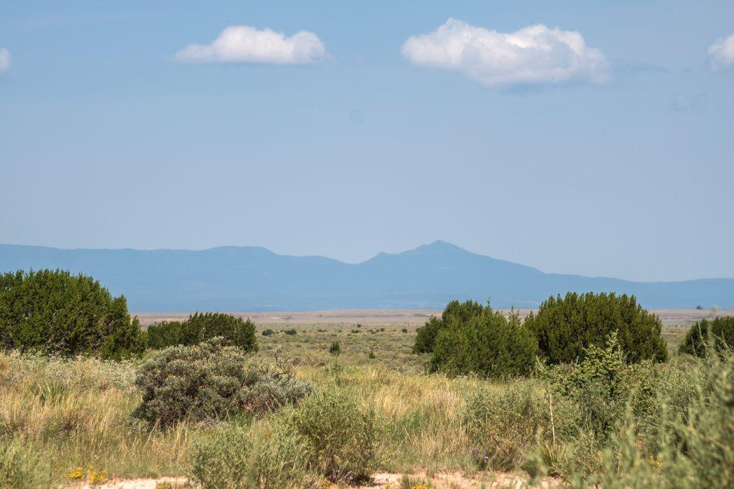 Highway 42 South Willard, NM 87063
