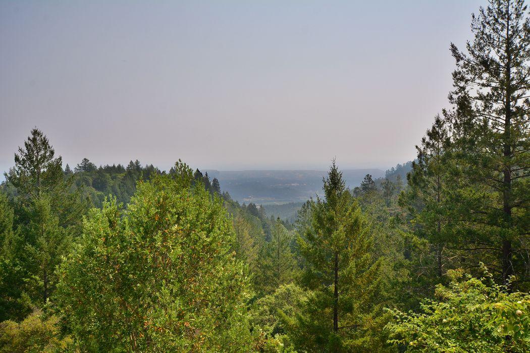 4040 Spring Mountain Rd Saint Helena, CA 94574