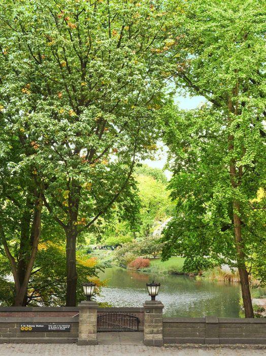 22 Central Park South New York, NY 10019