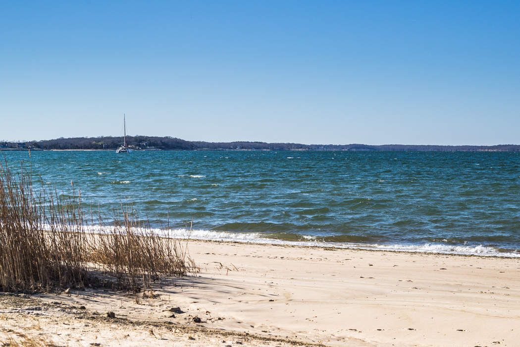 Sag Harbor Beach Community