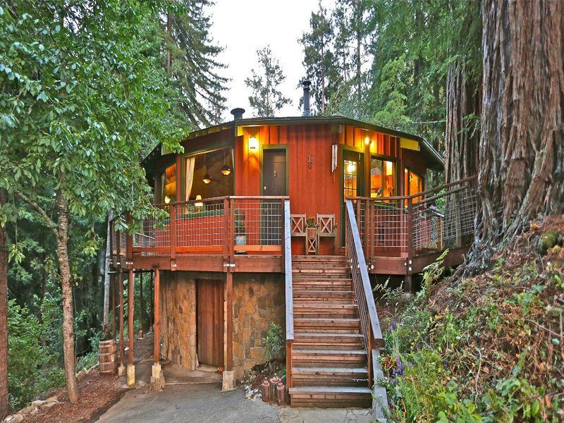 Vintage Tree House