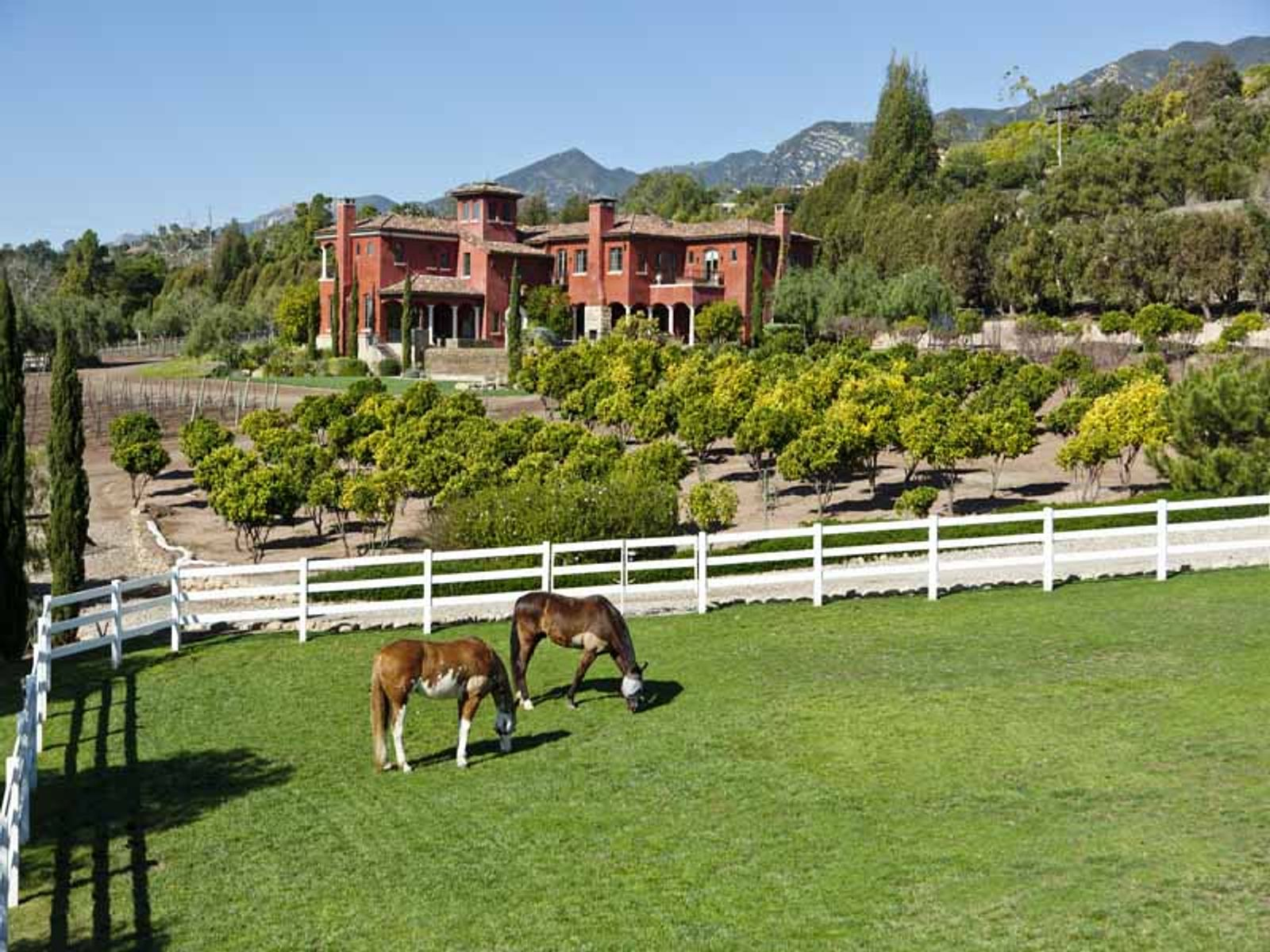 Santa Barbara Vineyard Equestrian Estate, Carpinteria CA Ranch / Farm - Santa Barbara Real Estate
