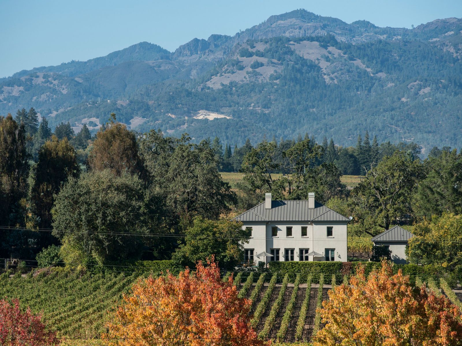 Modern Country Villa, St. Helena CA Single Family Home - Sonoma - Napa Real Estate