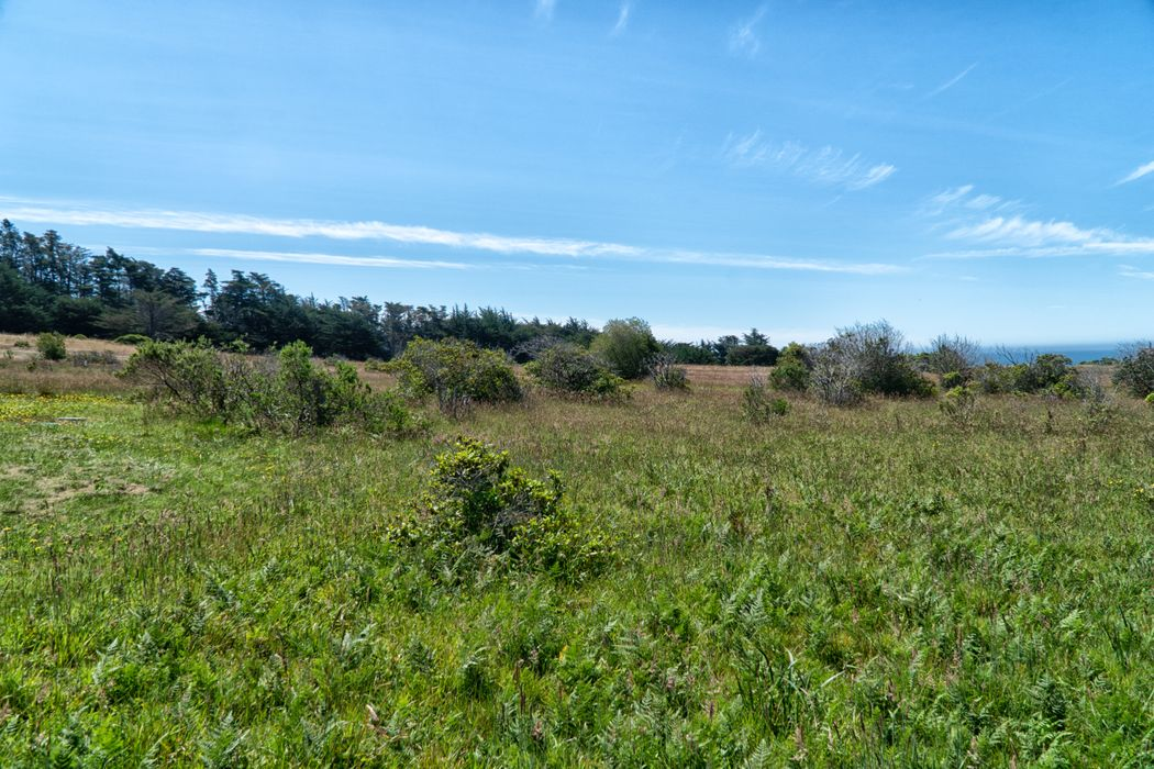 150 Wild Moor Reach The Sea Ranch, CA 95497