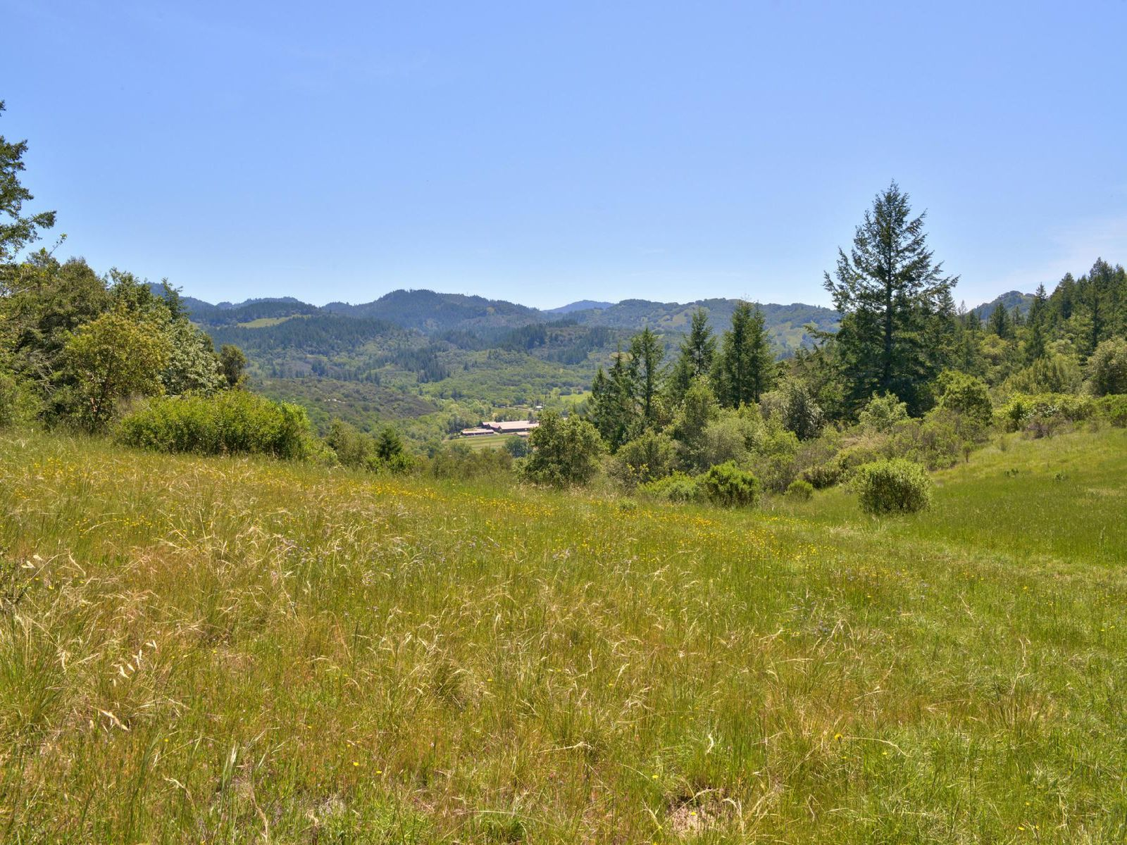 Expansive Valley Views