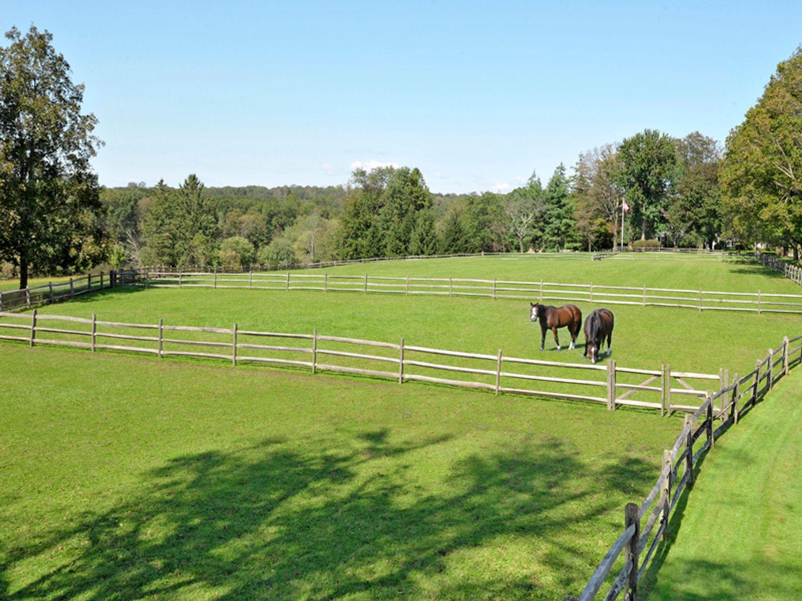 Bright Brook Farm