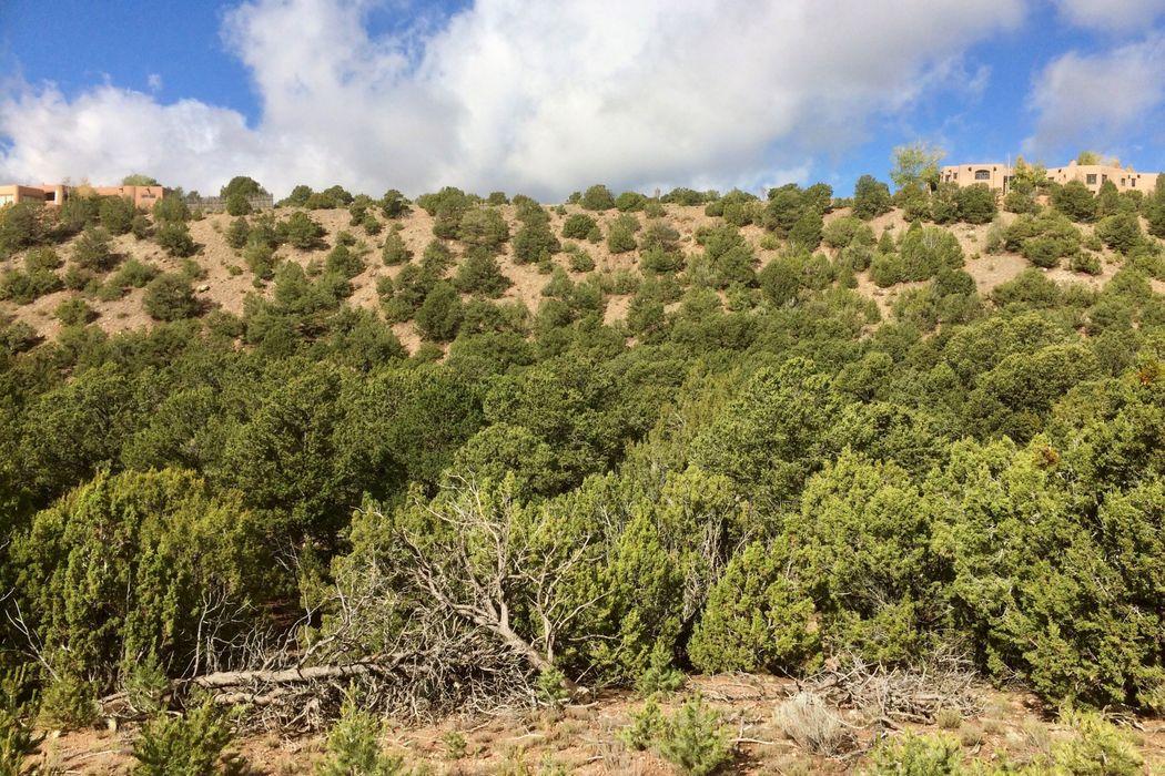 1008 Sierra Del Norte Santa Fe, NM 87501