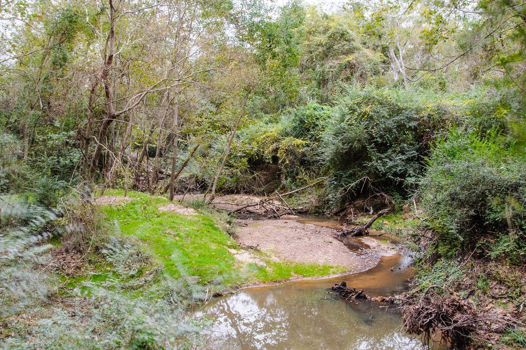 24710 Mesquite River Trail Hockley, TX 77447