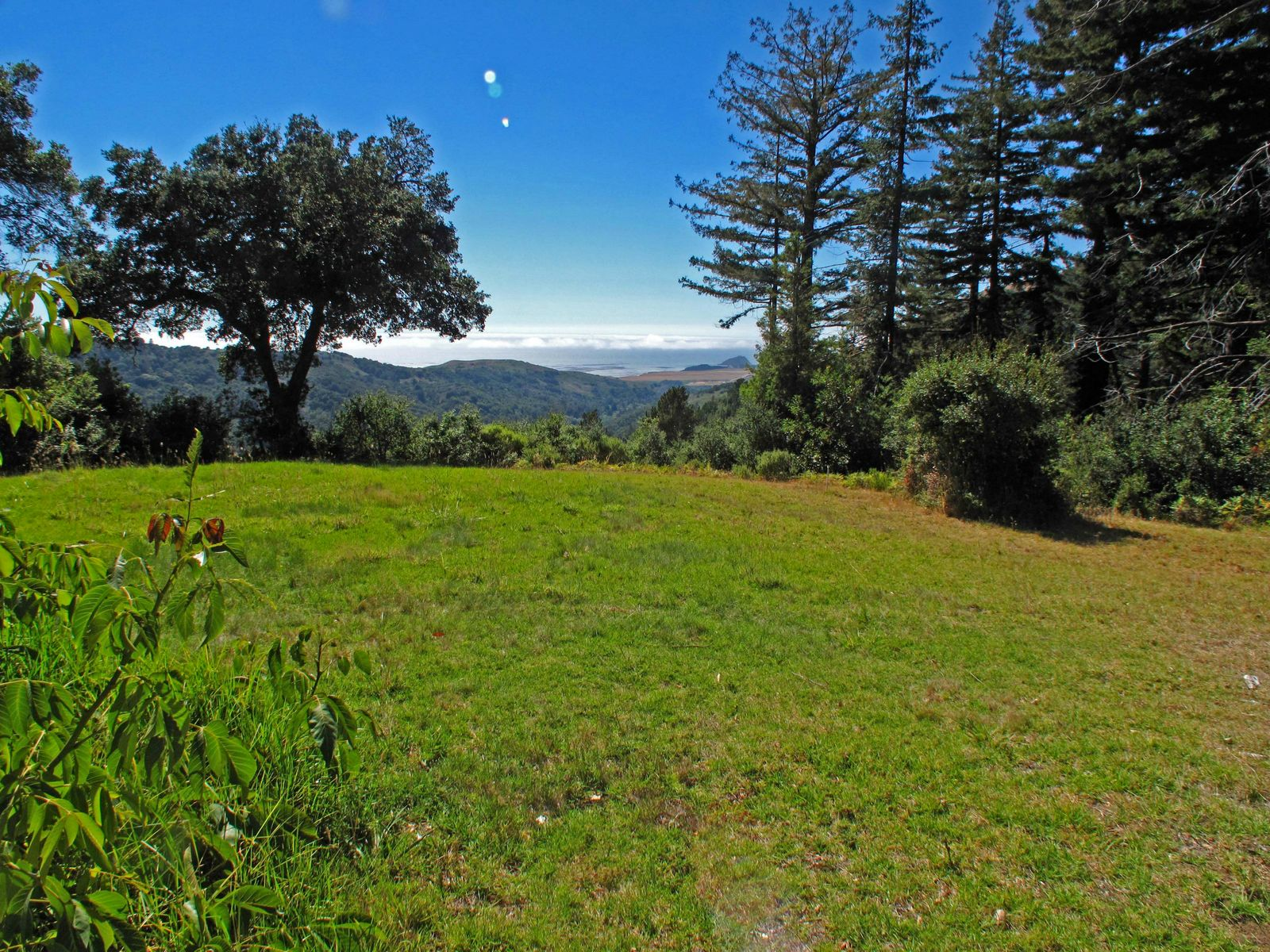 Big Sur Legacy Property