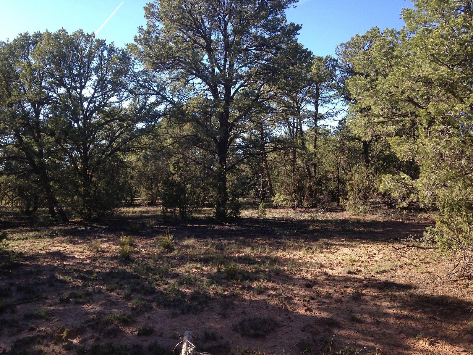 Apache Ridge, Tract 3-A (Mescalero Trail