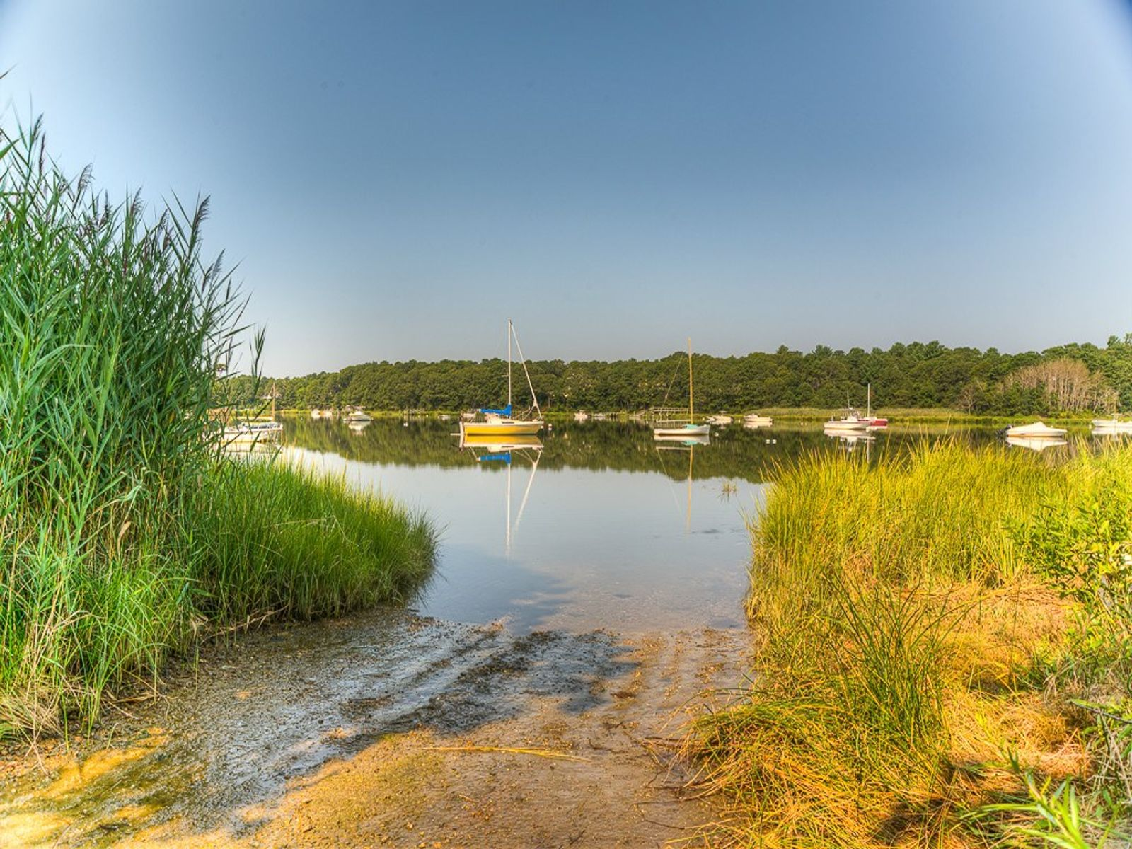 Cotuit Coves on Cape Cod