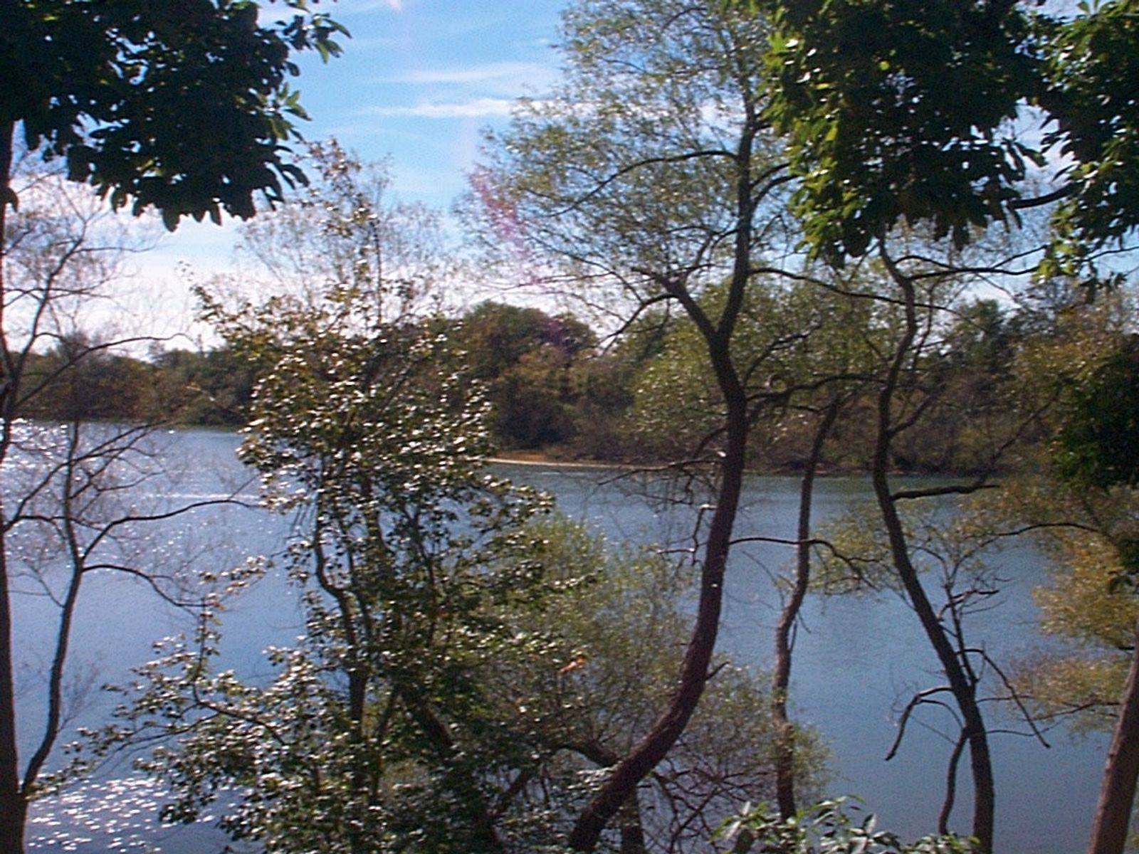 Kellis Pond with Southern Exposure