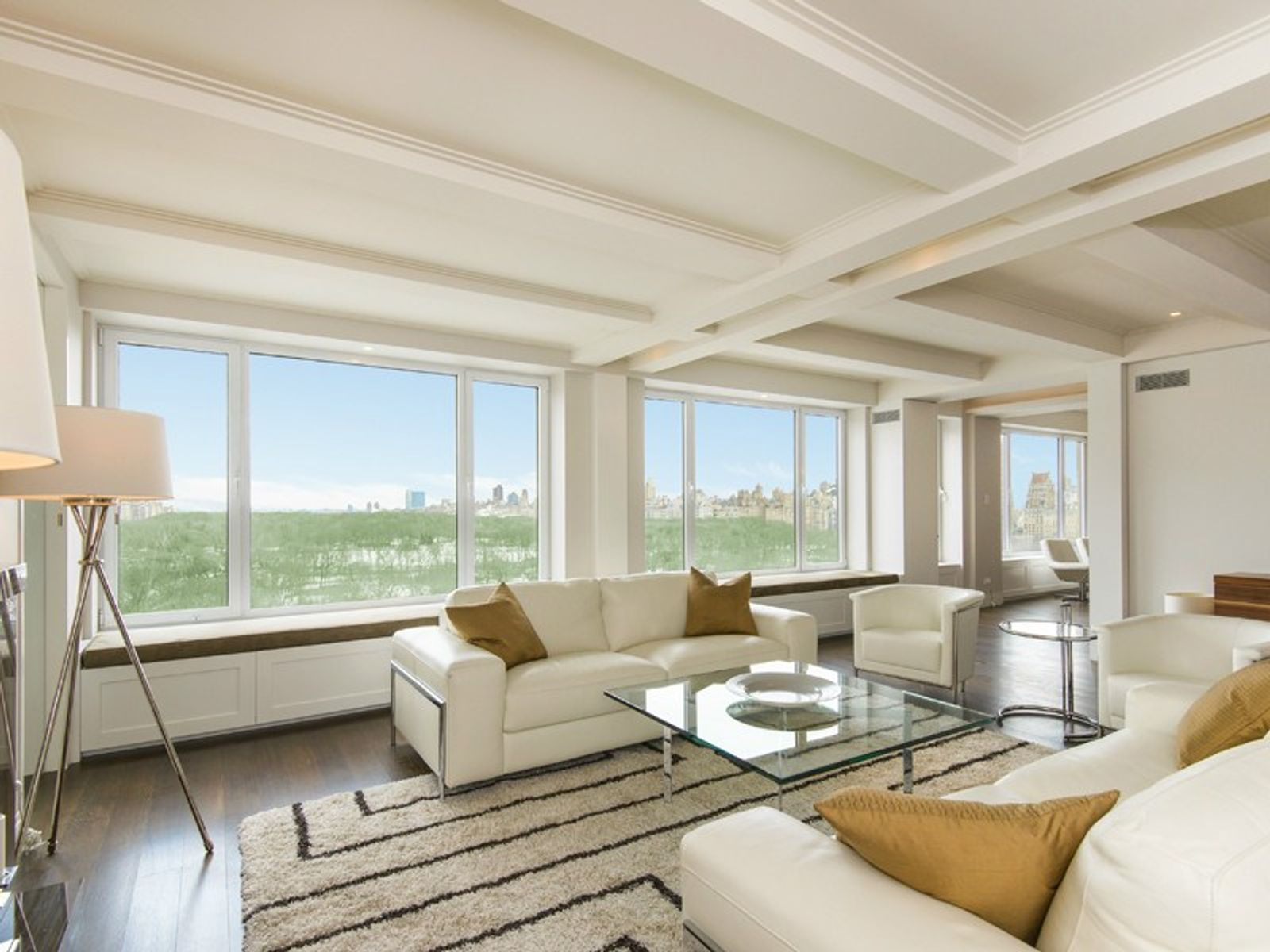 230 Central Park South, New York NY Condop - New York City Real Estate