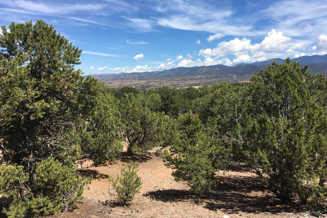 2958 Broker Sherd Trail, Lot 142