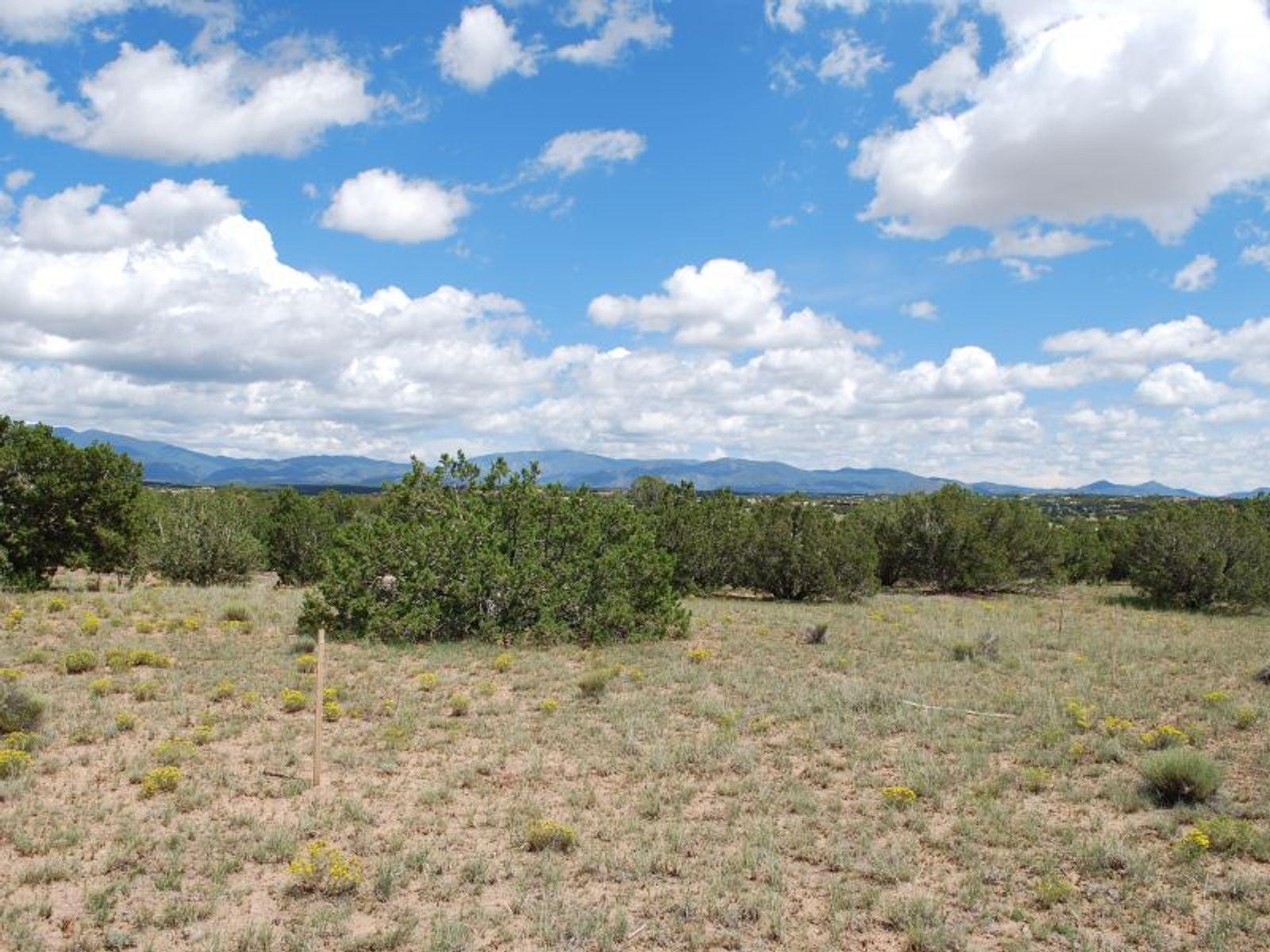 20 Picacho Peak Lot 636