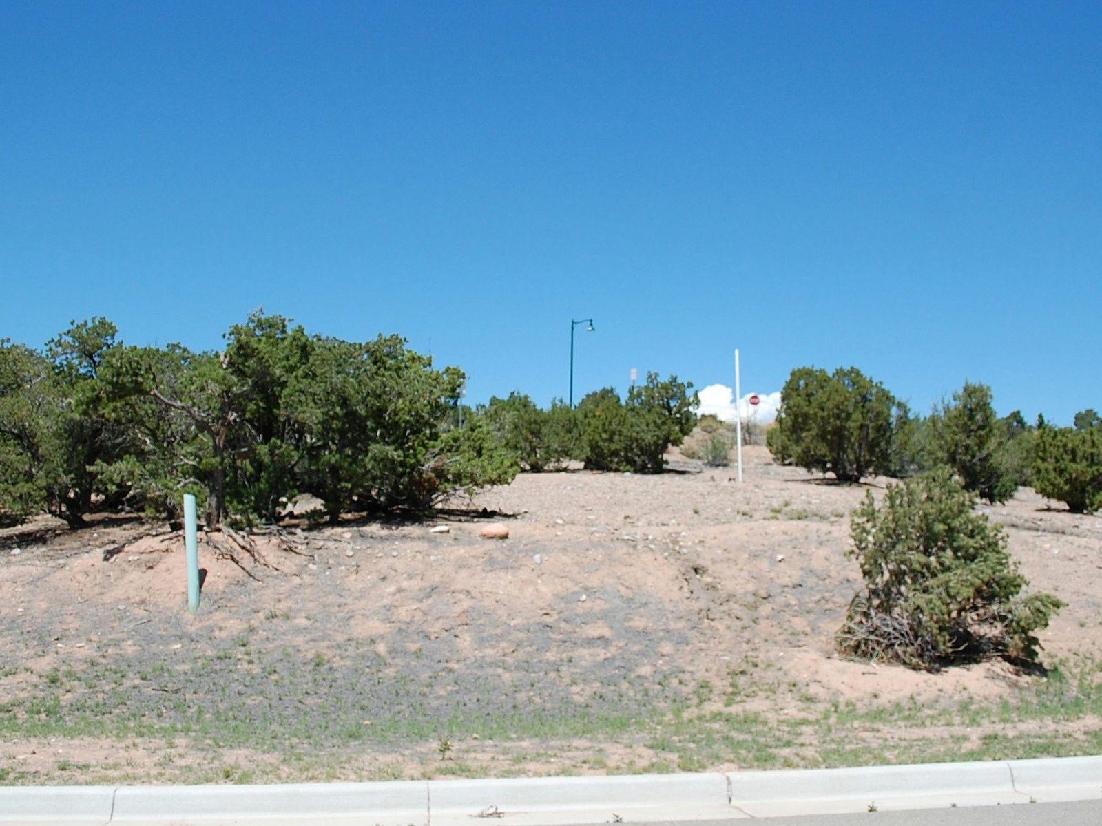 553 Pinon Bluffs Lane
