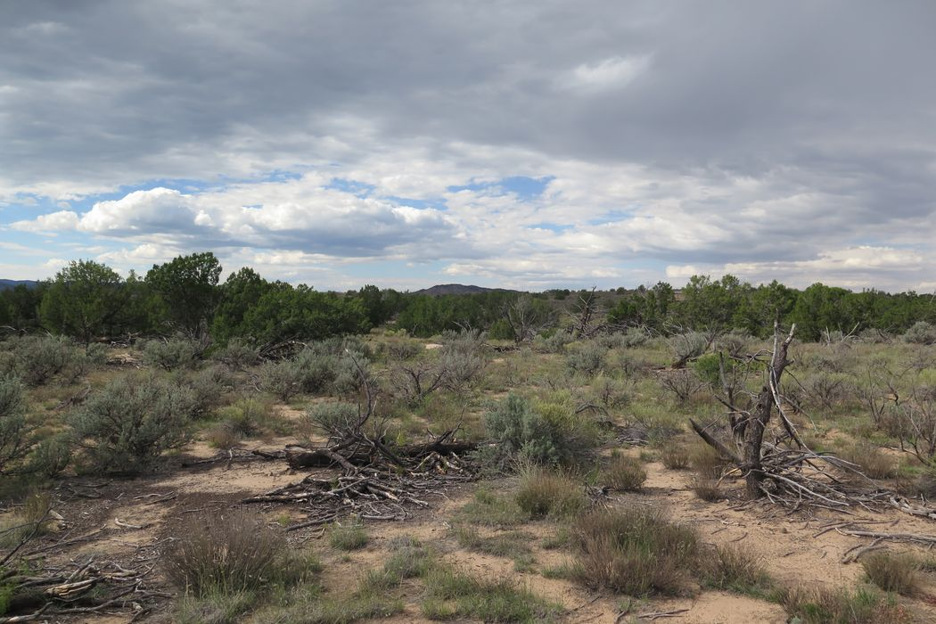 Highway 285, Tract 3 Ojo Caliente, NM 87549