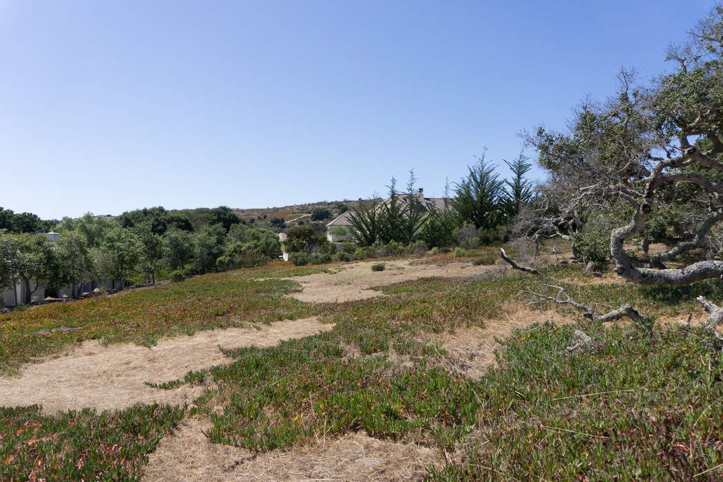 502 Estrella Doro Monterey, CA 93940