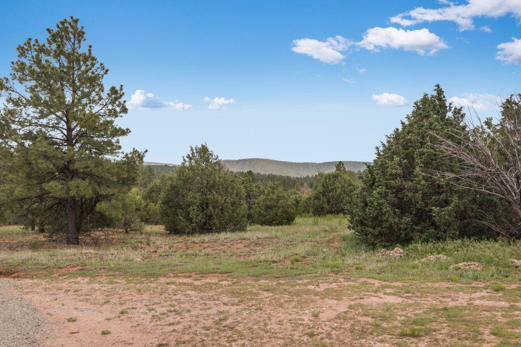 25 La Cueva Creek Road Glorieta, NM 87535