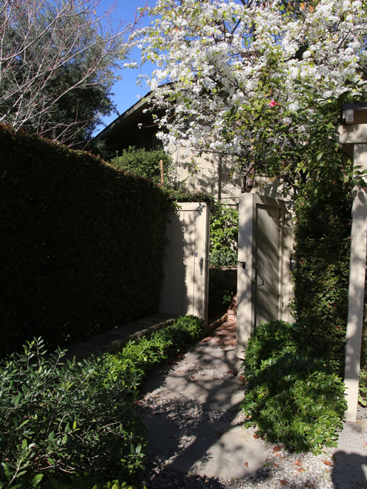 Hedged and Gated
