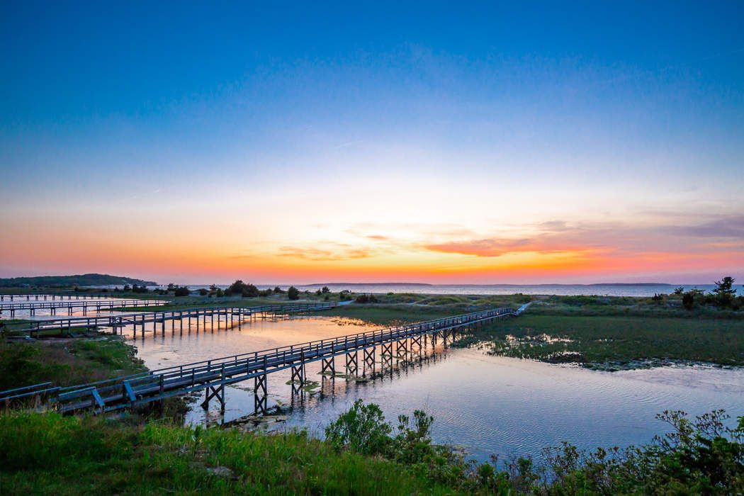 Nature Lovers Paradise On Peconic Bay