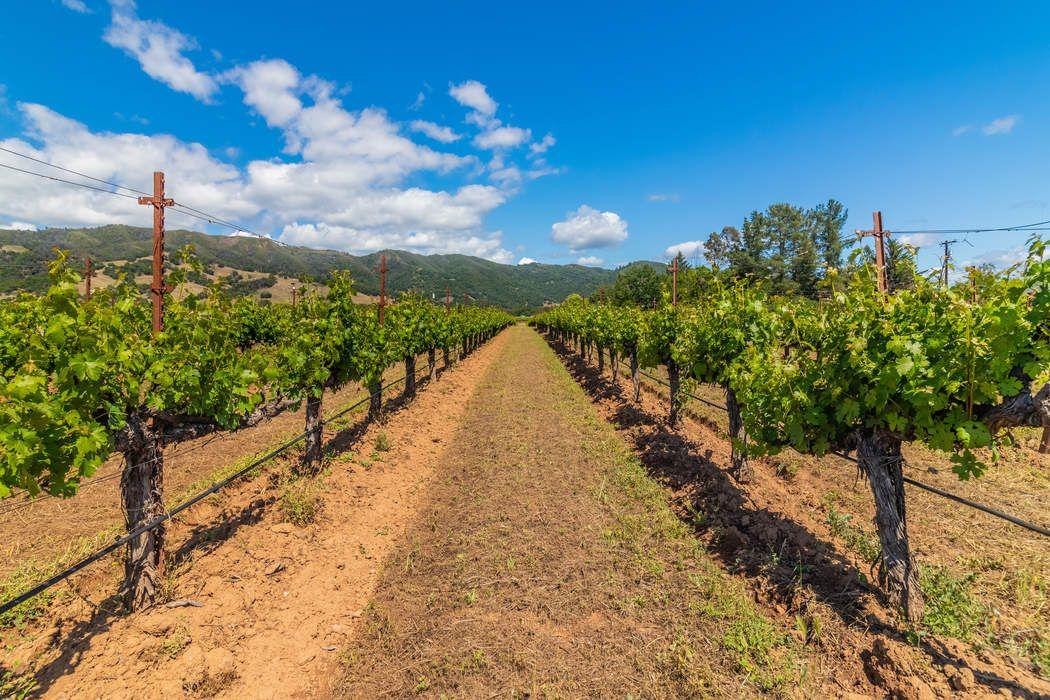 2401 Road H Redwood Valley, CA 95470