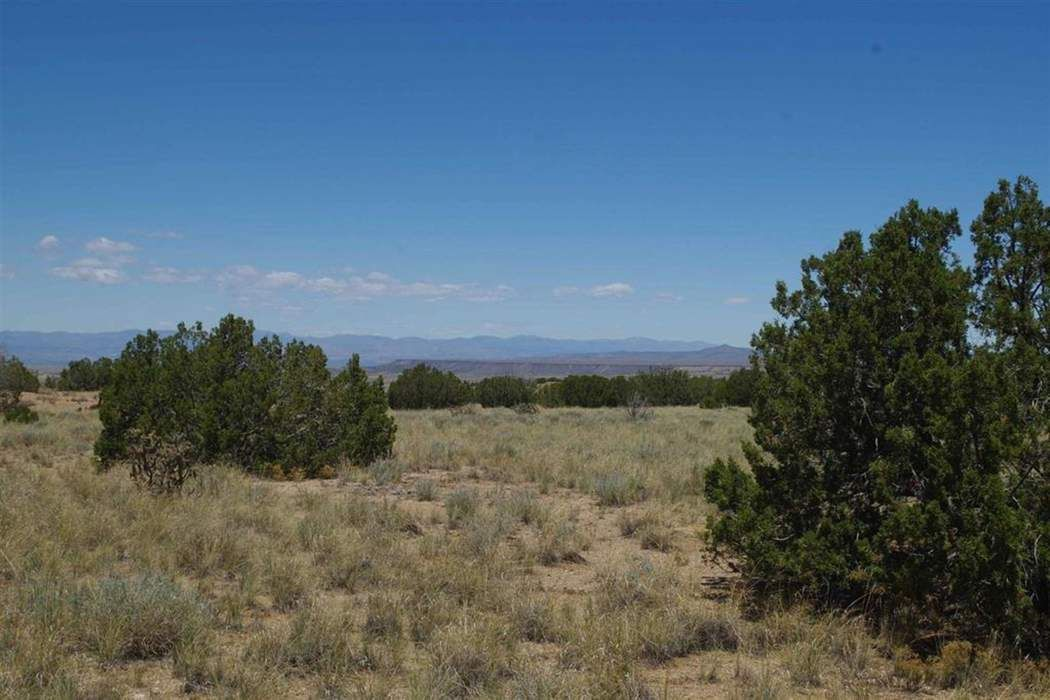 108 Waldo Mesa Road Madrid, NM 87010
