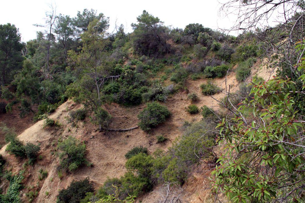10524 Scenario Lane Los Angeles, CA 90077