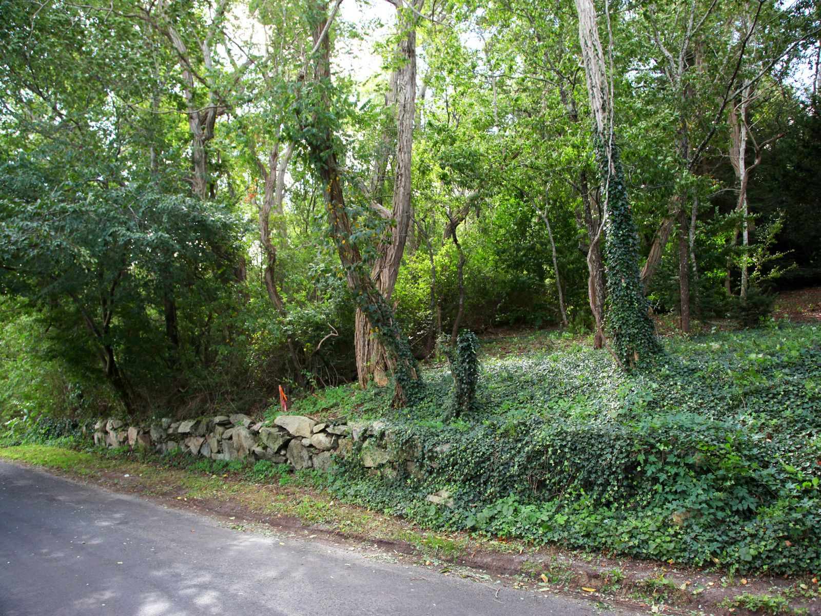 6.2 Pristine Acres Near Village & Beach