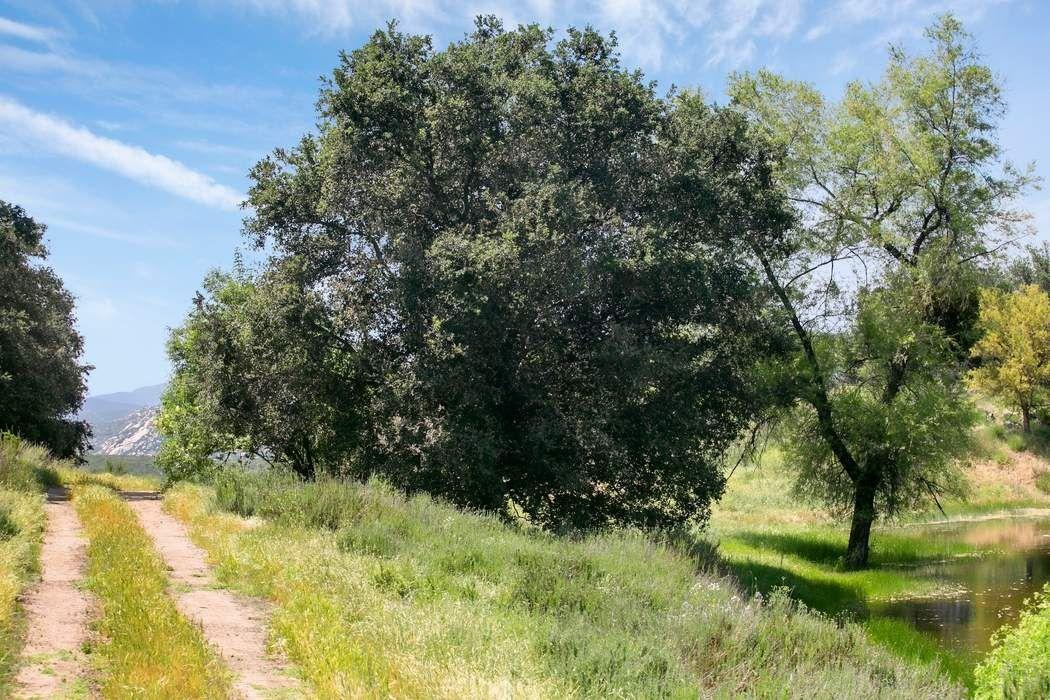 28428 Highway 78 San Diego, CA 92065