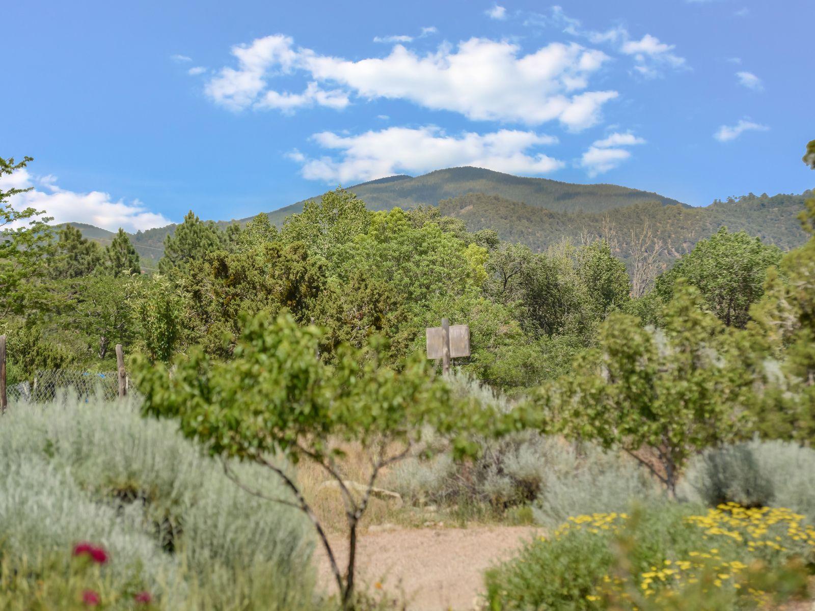 1400-A Cerro Gordo
