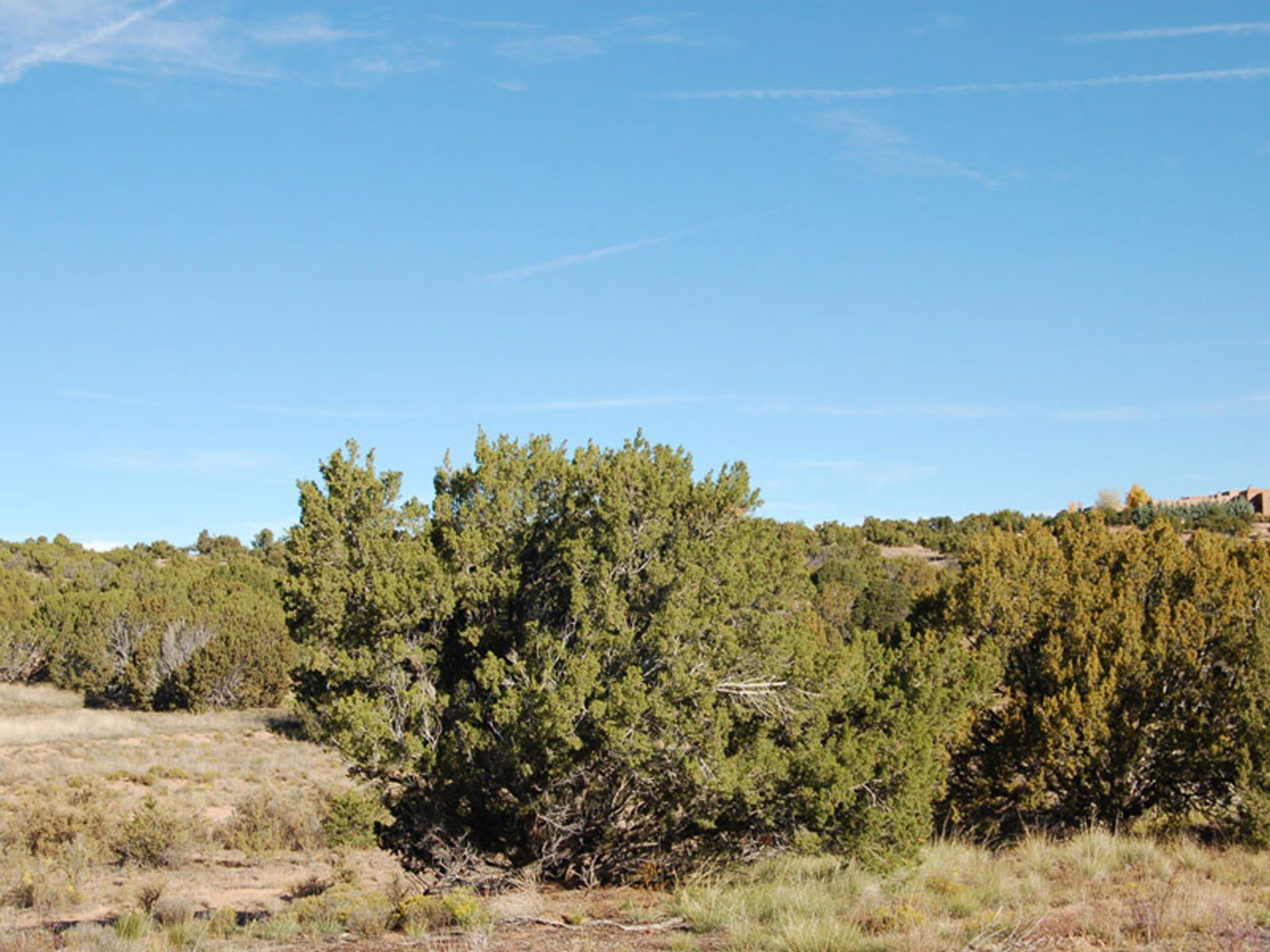 13 Arroyo Privado, Santa Fe NM Acreage / Lots - Santa Fe Real Estate