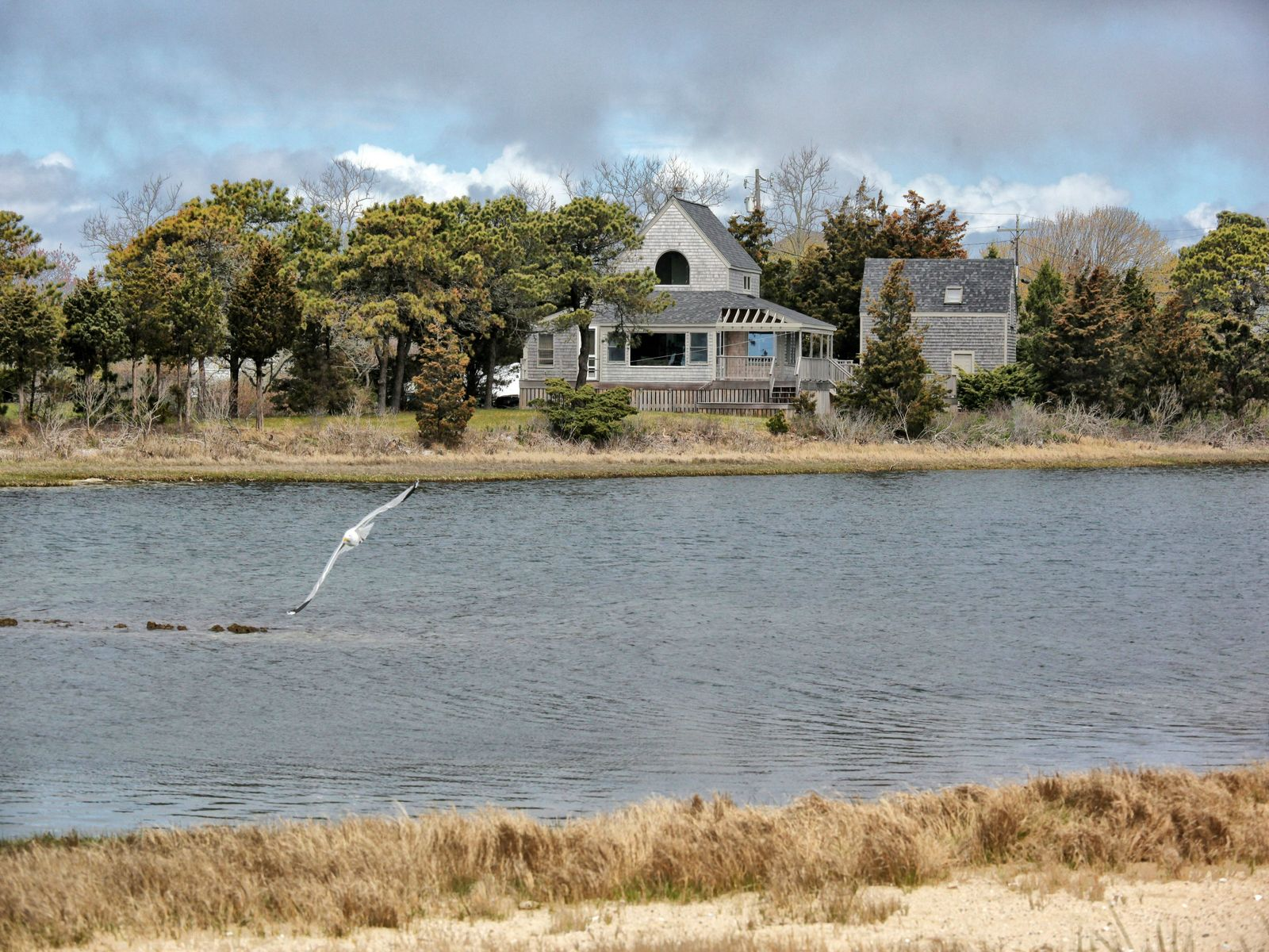 Waterfront Contemporary Cape, East Falmouth MA Single Family Home - Cape Cod Real Estate