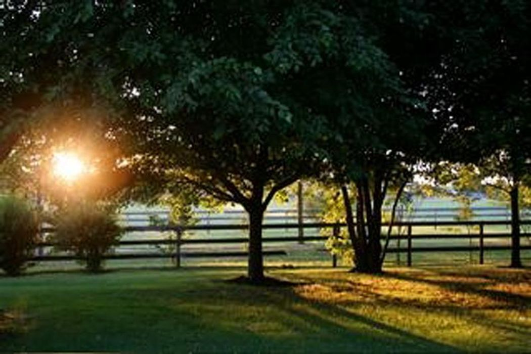 Water Mill South Overlooking Horse Farm Water Mill Ny 11976 Sotheby S International Realty Inc