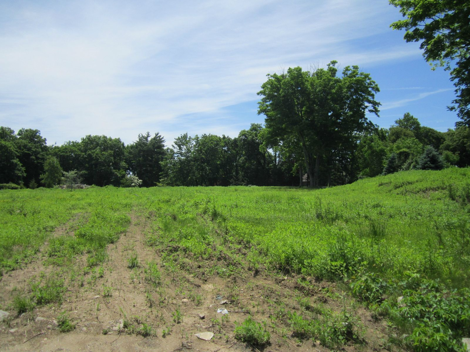Extrodinary Mid-Country Land Opportunity