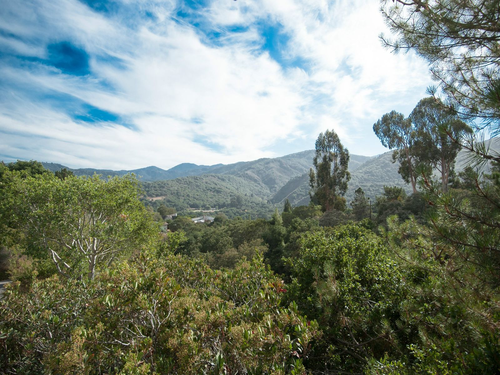 Big Views in Carmel Valley