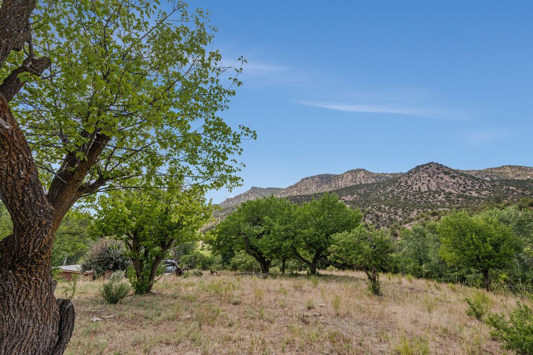 595 Cr 194 Canones, NM 87516