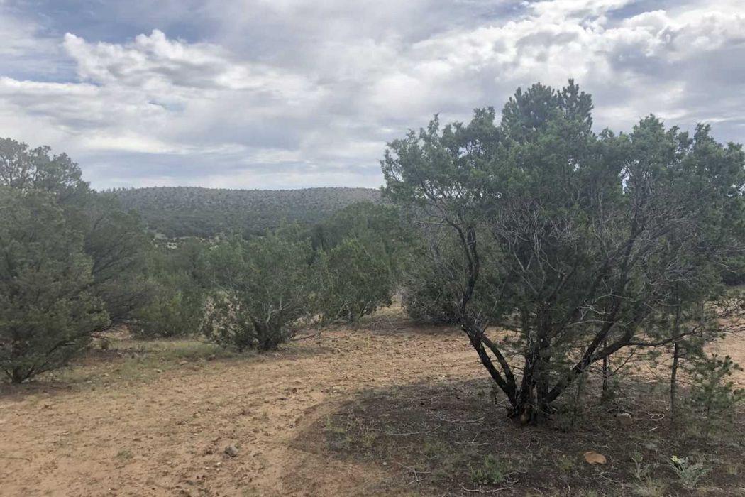 36 Sheridan Road, 15.61 Acres Romeroville, NM 87701