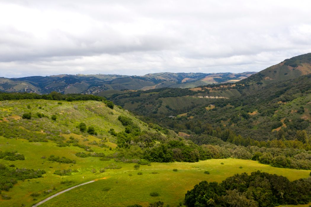 15 Mesa Trail Carmel, CA 93923