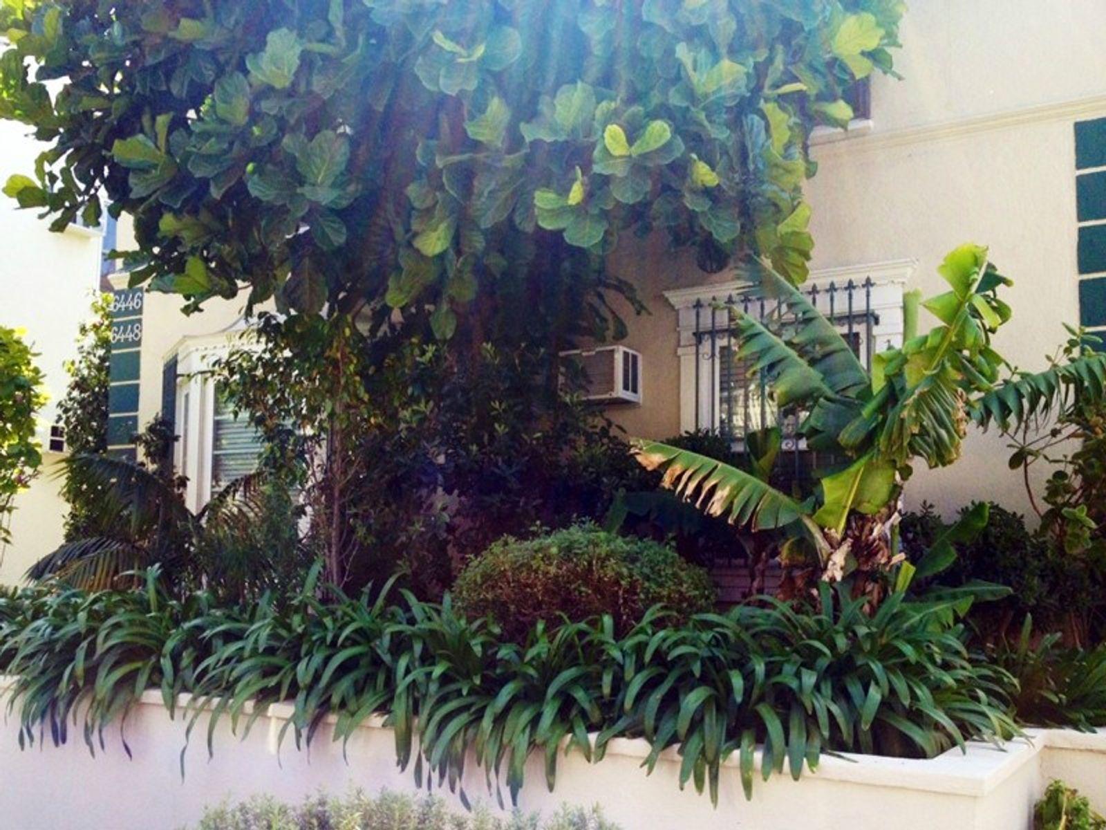Elegant 4-Plex, Beverly Hills Adjacent